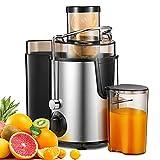 Centrifuga Frutta e Verdura, 400W Estrattore di Succo a Freddo a 65MM Bocca, Acciaio Inossidabile a Usi Alimentari senza BPA, Funzione Antigocciolamento,Facile da Pulire, Argento
