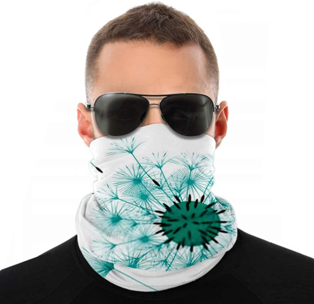 Headbands For Men Women Neck Gaiter, Face Mask, Headband, Scarf Abstract Background Dandelion Design Wind Blows Turban Multi Scarf Double Sided Print Headband Women For Sport Outdoor