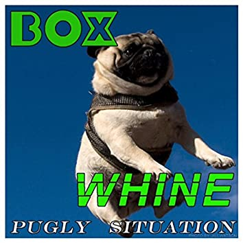 Pugly Situation