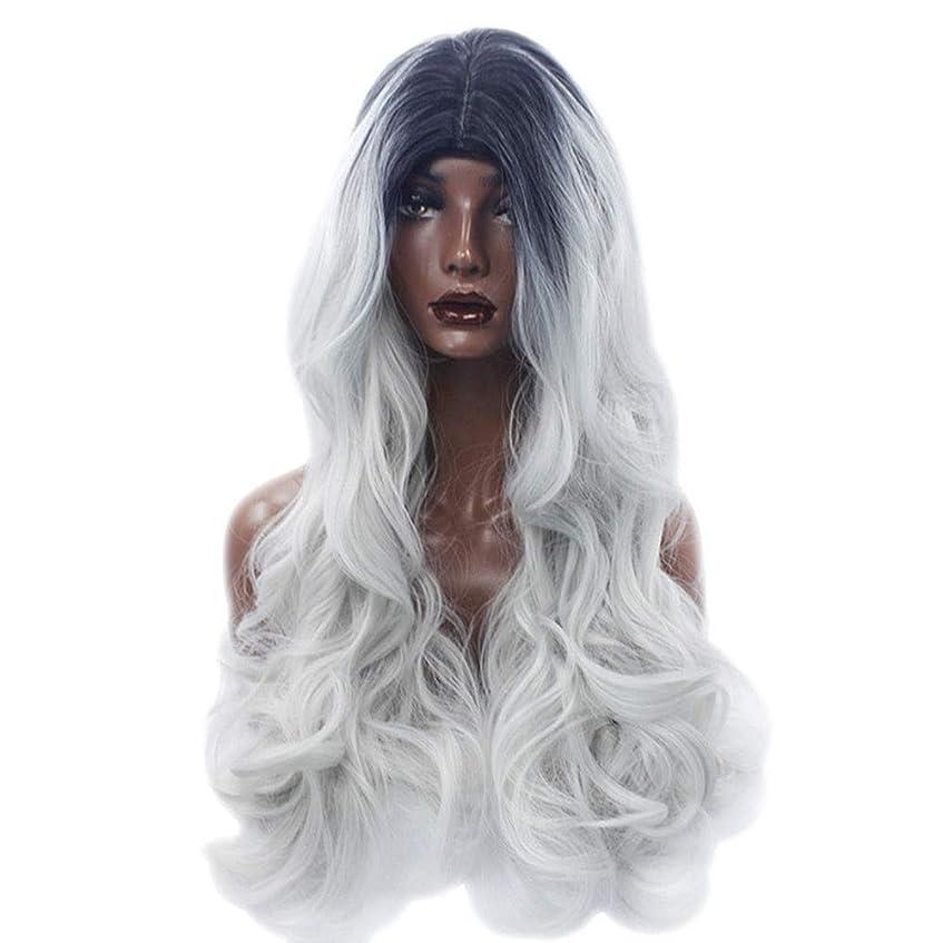 化合物ファンシープリーツBOBIDYEE グラデーションかつら女性用仮装ロングフルヘッドコスプレかつら女性用合成かつらレースかつらロールプレイングかつら (色 : Photo Color)