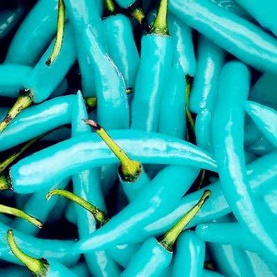 Shopvise de piment de semences de légumes 100 unités; couleur 23