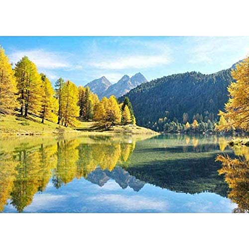 Fullbeing DIY Full Round Diamond Painting Autumn Tree Lake Rhinestone Craft Kit
