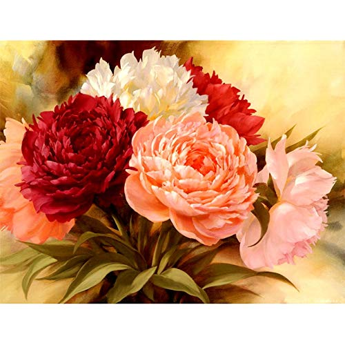 Yminng Full Square Diamond 5D DIY Diamond Painting Peony Flowers 3D Round Embroidery Cross Stitch Rhinestone Mosaic Painting Decor - Square Drill,30x40cm