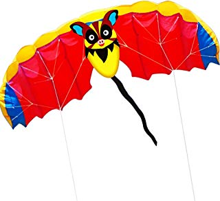 HENGDA KITE 1.4M Bat Design Kites Soft Dual Line Stunt Sport Parafoil Kite 55-inch with Flying Tool Set