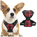 rabbitgoo Dog Harness No Pull, Adjustable Dog Walking Chest Harness with 2 Leash Clips, Co...