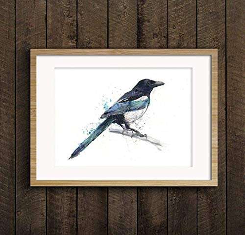 Fine Art Print of My Original Magpie Bird Watercolor Painting Signed A3 A4 Wildlife Animal Garden