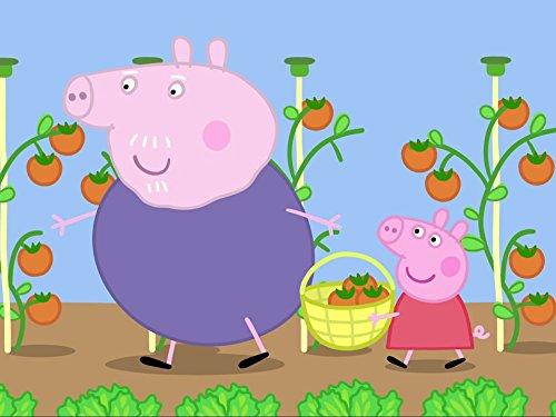 Schweinchen in der Mitte / Salat