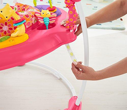 Fisher-Price Jumperoo: Pink Petals