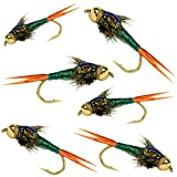 BH Copper John Fly Fishing Nymph Trout Fly Assortment (Green)