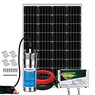Pumplus Complete 120W Stainless Steel Solar Pump Kit - 12V Large Flow 3.2GPM Solar Water Pump Maximum Lift 230FT, Submersible Well Pump with 6AH Lithium Battery for Irrigation, Deep Well, Breeding