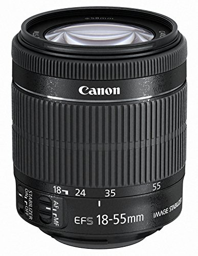 Canon EF-S 18-55mm f/3.5-5.6 IS STM - Objetivo para Canon (Distancia Focal 18-55mm, Apertura f/3.5-38, Zoom óptico 3X,estabilizador, Motor de Enfoque, diámetro: 58mm) Negro