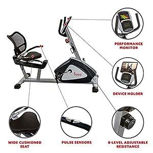 Sunny Health & Fitness Endurance Zone Recumbent Bike - SF-RB4958