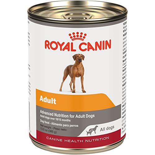 Royal Canin Canine Health Nutrition Adult In Gel Canned Dog Food, 13.5 Oz (Pack of 12)
