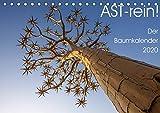 Astrein! - Der Baumkalender 2020 (Tischkalender 2020 DIN A5 quer): Bäume aus verschiedenen Perspektiven in 12 hochwertigen Fotografien (Monatskalender, 14 Seiten ) (CALVENDO Natur)