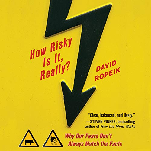 How Risky Is It, Really? cover art