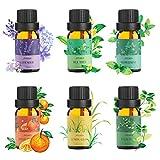 Ato Bea diffuseur huile essentielle 100% Pure huiles essentielles bio 10ml*6 Orange, Lavande, Arbre à Thé, Citronnelle, Eucalyptus, Menthe huile essentielle Poivrée grande boite cadeau