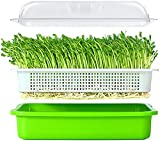 Seed Sprouter Tray with Lid Bean Sprout Grower Germination Kit Wheatgrass Grower 13.4x9.84x4.2 inches(LxWxH)