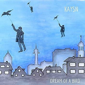 Dream of a Bird