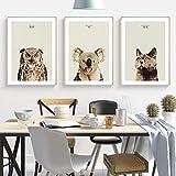 Handaxian Pintura de Lienzo nórdica Art Deco Animal Pintura búho Gato Koala Imagen Impresa Cartel Sala de Estar Dormitorio decoración Cartel Pintura 50x70cm sin Marco