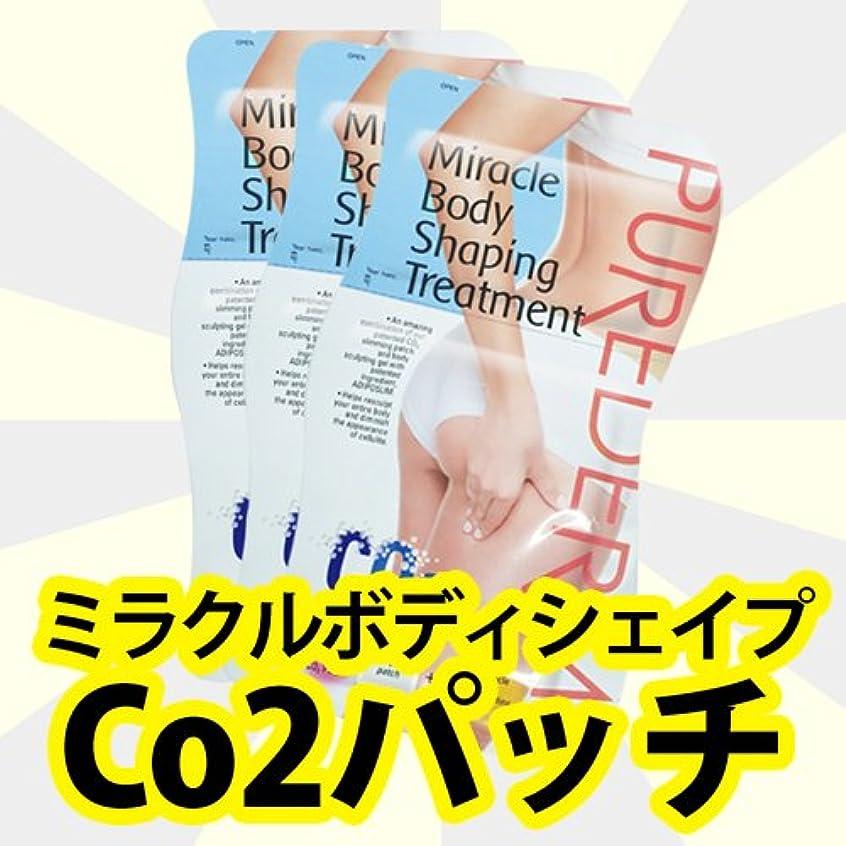 深める物理的に株式会社[ミラクルボディシェイプCo2パッチ]ダイエットパッチ!注射器なしカーボキシーパッチで細いシェープ/新しいダイエットパッチ!Co2 Carboxy Patch/韓国コスメ