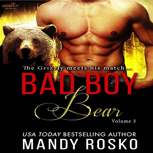 Bad Boy Bear Volume 3 audiobook cover art
