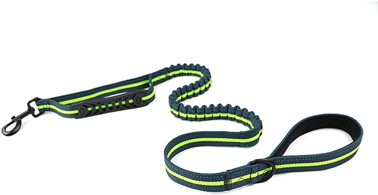 Bungee Dog Cat Lead Shock Absorbing Reflective Pet Leash in Large Retractable Pulling Support Animal.