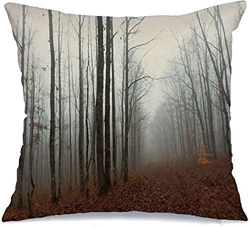 Funda de Almohada Paisaje mágico en la Niebla Parques forestales de otoño Mañana Texturas al Aire Libre Tranquilo Blanco Misterio Clima Cómodo cojín Decorativo de Lino Funda de Almohada para