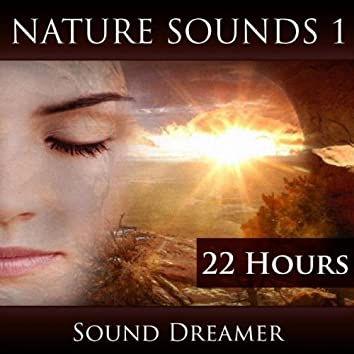 Nature Sounds 1 (22 Hours)