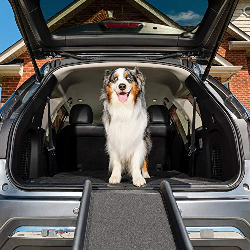 PetSafe Happy Ride Folding Pet Ramp, 62 in, Portable Lightweight Dog and Cat Ramp, Great for Cars, Trucks and SUVs