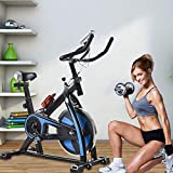 Exercise Bike Recumbent Cycle Bike Trainer Indoor Cycling Bike Stationary with LCD Display and...