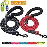 Leash For Dogs That Pulls - Best Reviews Guide