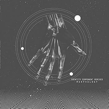 Identity Component Remixes
