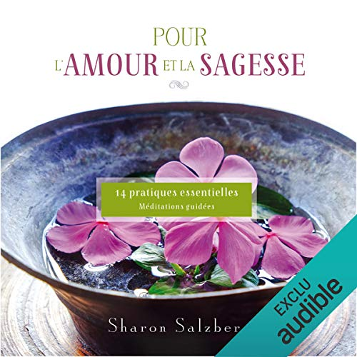 Pour l'amour et la sagesse : 14 Pratiques essentielles cover art