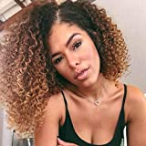 Adette 100% Brazilian Human Hair Ombre Brown Bundles 16 18 20 Kinky Curly Bundles Two Tone Black to Brown Bundles Unprocessed Remy Hair Extensions for Beautiful Women