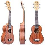 FZONE 21 Inch Sapele Soprano Ukulele With Aquila Strings, OX Bone Saddle, 15 Frets