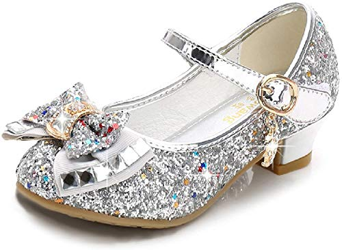 Walofou Silver Mary Jane Glitter Shoes for Girls Size 13 Wedding Party Wear High Heels Shoes for Girls Wedding 8 Yr Cosplay Low Heeled Princess Little Kid Bridesmaid Girl Dress Shoes (28-05 Silver 13