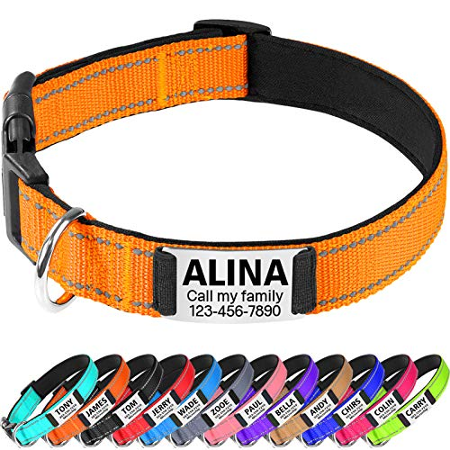 TagME Hundehalsband Mittel Hunde,Reflektieren Hunde Halsband mit Name und Telefonnummer,Orange M