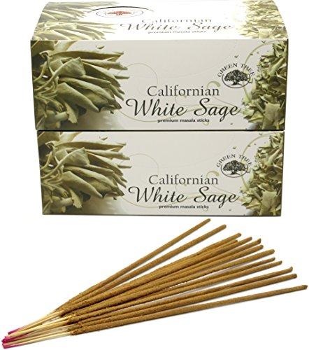 Encens Green Tree - White Sage - Sauge Blanche – lot de 24 boites