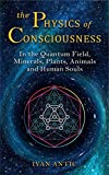 The Physics of Consciousness: In the Quantum Field, Minerals, Plants, Animals and Human Souls (Existence - Consciousness - Bliss Book 9)