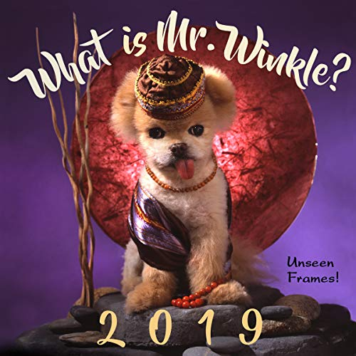 What is Mr. Winkle 2019 calendar