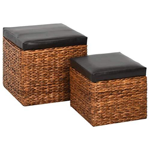 Festnight Repose-Pied Tabouret Pouf Cube de Rangement 2 pcs Jacinthe d'eau Marron et Noir