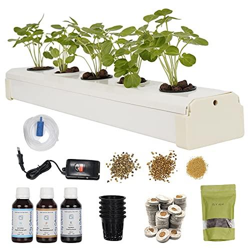 City Greens Hydroponics Kit for Home - DWC Hydroponic System - 5 Planter Set - Starter kit for Kids