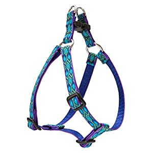 LupinePet Originals 1/2″ Rain Song 12-18″ Step In Harness for Small Dogs