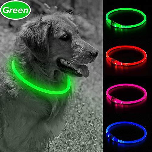 Clan_X LED Hundehalsband, USB wiederaufladbares Haustierhalsband für Hunde, leuchtende Hundekette bei Nacht, blinkende Haustierringe halten Ihren Hund sicher in der Dunkelheit, grün