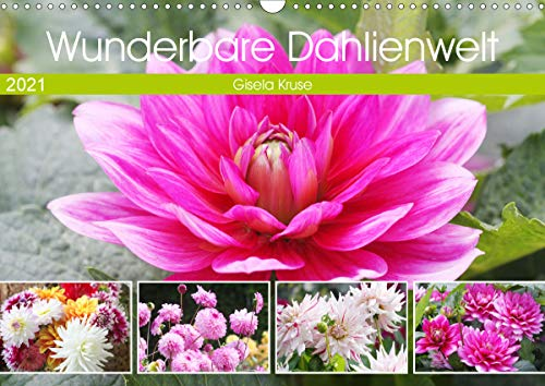 Wunderbare Dahlienwelt (Wandkalender 2021 DIN A3 quer)
