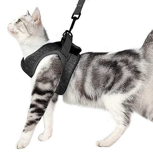 Ghaike Arnés y correa para gatos, chaleco ajustable antiescape, apto para entrenamiento al aire libre y caminar de perros y gatos pequeños