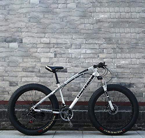 AISHFP Fat Tire Mountain Bike Herren, Beach Bike, Doppelscheibenbremse Cruiser Bikes, 4.0 breite Räder, Erwachsene 24 Zoll Schnee Fahrrad,Silber,27 Speed