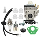 Coolwind E43 Carburetor with Fuel Filter Repower Tune-Up Kit for Earthquake E43WC E43CE Replaces Auger MC43 MC43E MC43CE MC43RCE MC43ECE Tiller MD43 WE43 WE43CE WE43E Edger 300486