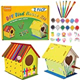 DIY Bird House Kit for Kids-2 Pack Big Size Build and Paint Birdhouse Crafts for Kids Ages 4-8 Wood Project for Girls Boys Toddlers Ages 3-5 8-12 with 12pcs Paints and 6pcs Brushes, Resin Decor