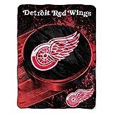 NHL Detroit Red Wings 'Ice Dash' Micro Raschel Throw Blanket, 46' x 60'
